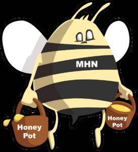 modern honey network